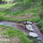 Fuente Tebia, Camoca