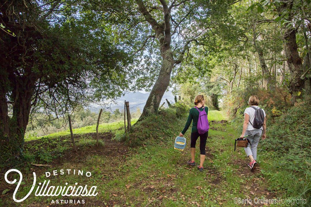 3 rutas de senderismo en Villaviciosa 2