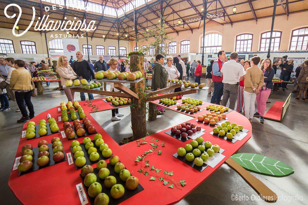Festival de la Manzana de Villaviciosa 1