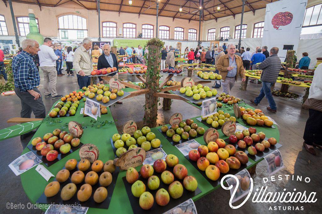 Festival de la Manzana de Villaviciosa 3