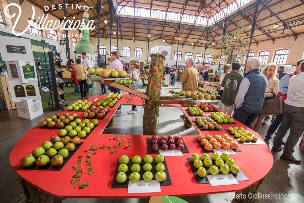 Festival de la Manzana de Villaviciosa 4