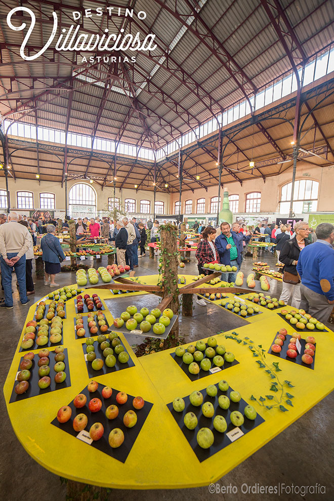 Festival de la Manzana de Villaviciosa 5