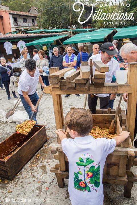 Feria de los figos de Rozaes 14