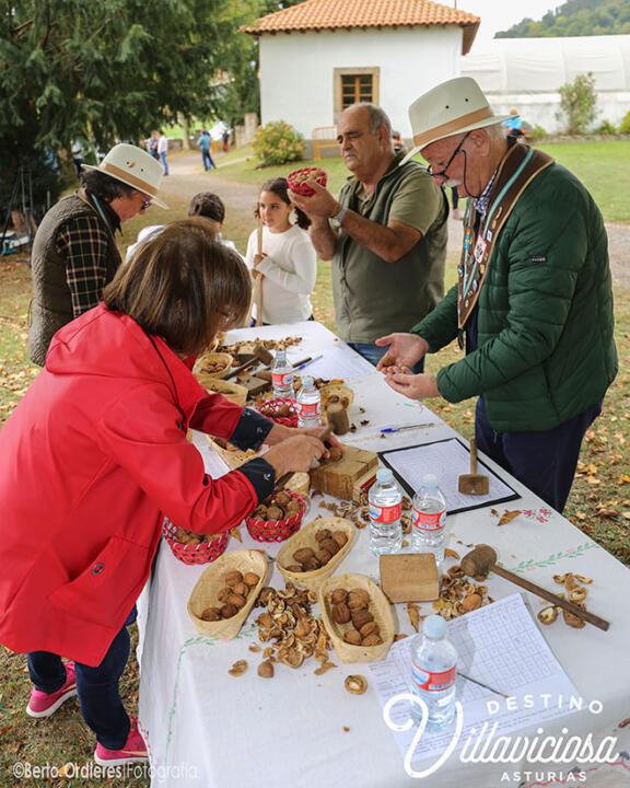 Feria del Lino y las Nueces de Camoca 1